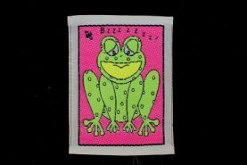 Multi-coloured Frog Sew-on Applique Patch